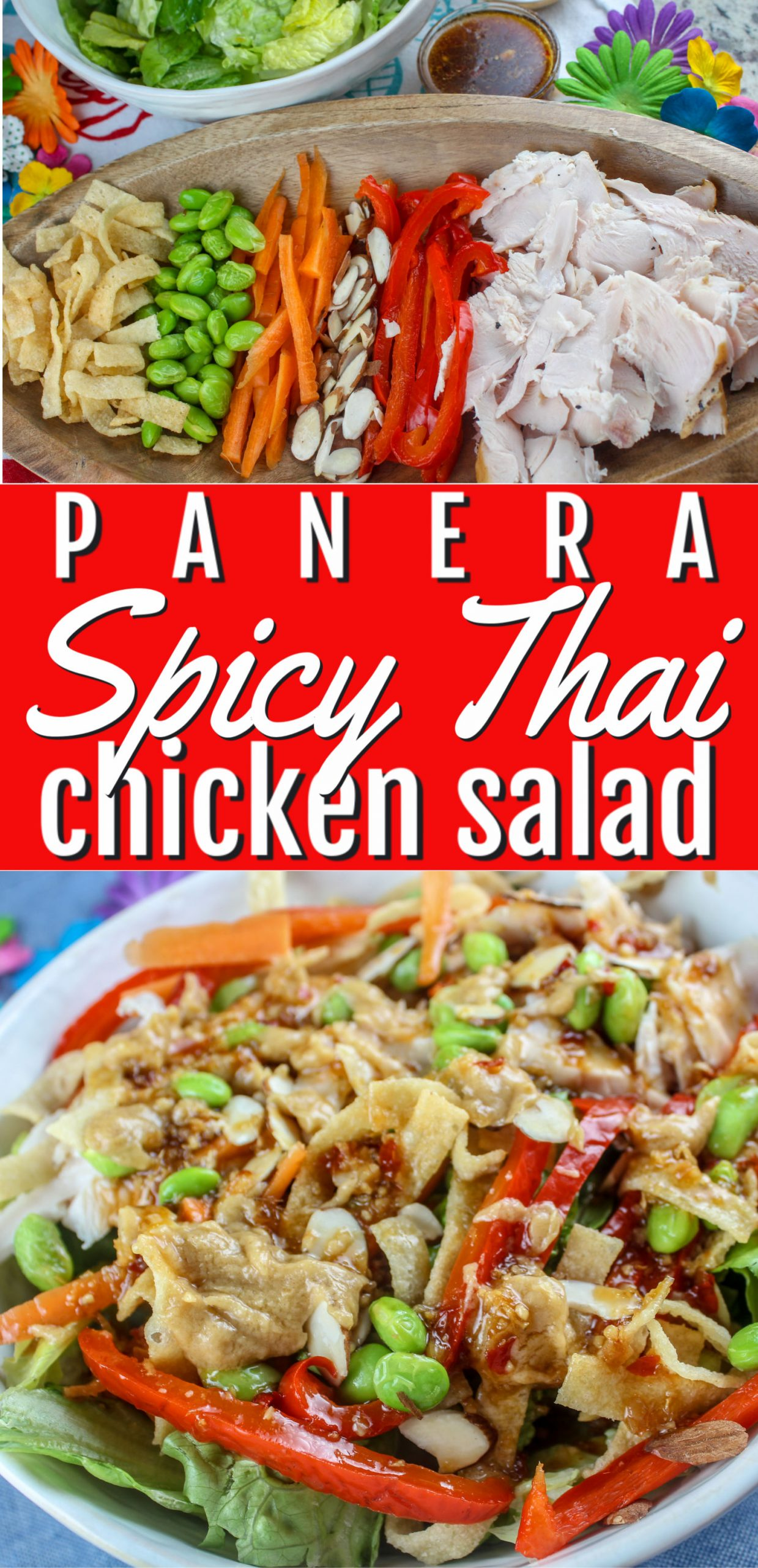 Love this Panera Spicy Thai Salad - there's so many different crunchy items packed into this salad and topped with a spicy dressing and peanut sauce - it's a favorite in our house! via @foodhussy