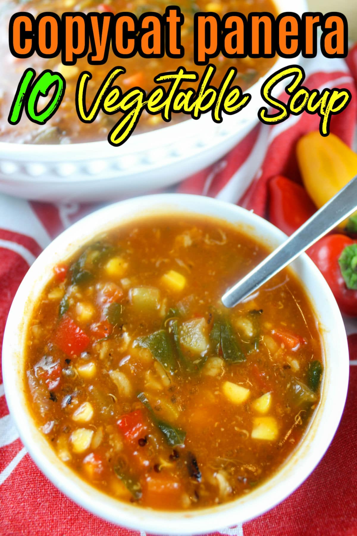 Panera's Ten Vegetable Soup is obviously LOADED with vegetables - 10 to be exact - but it's also packed with nutrition and flavor! This copycat recipe has all the healthy goodness you've come to expect from Panera - and I think - it even tastes a little better! ;-)  via @foodhussy